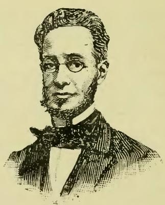 franciscootaviano