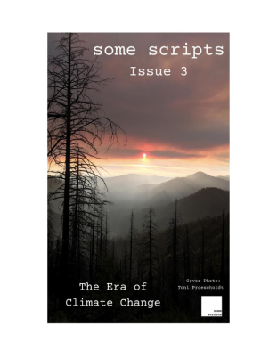 some scripts issue 3
